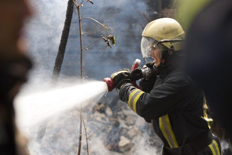 Klaipėdos rajone – didelis miško gaisras