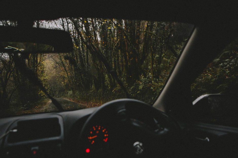 Vykdami į tarnybą Druskininkų pasieniečiai išgelbėjo dvi gyvybes