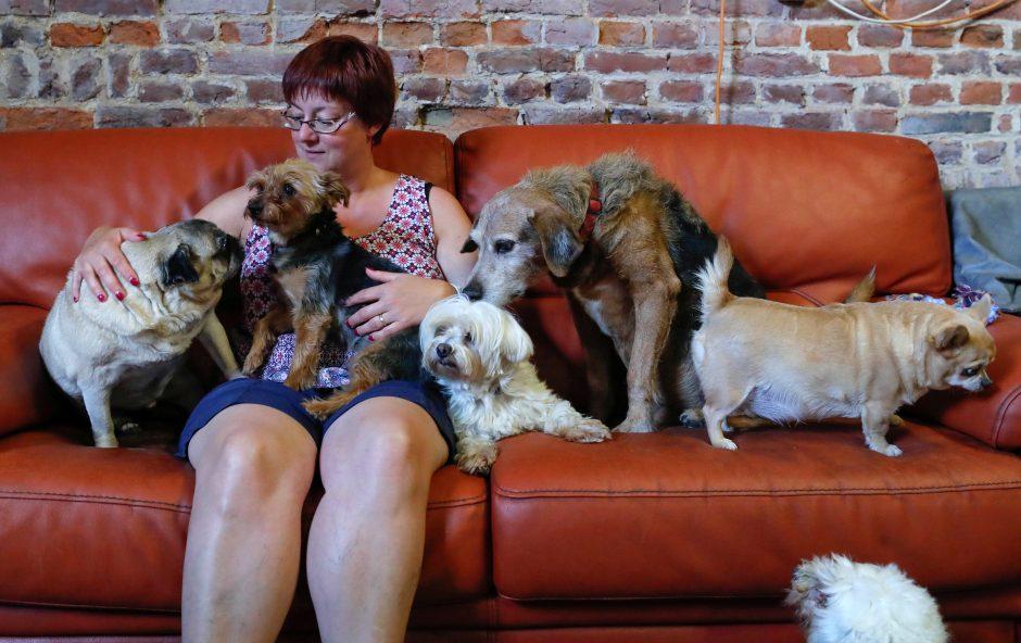 Didžioji Britanija siūlo uždrausti trečiosioms šalims prekiauti naminiais gyvūnais