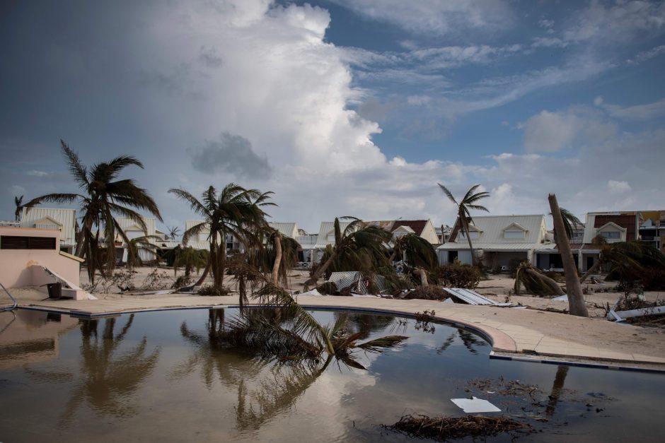 JAV žvaigždės uraganų aukoms per valandą surinko 14,5 mln. dolerių