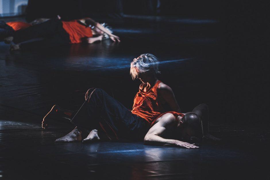 """Tarptautinis menų festivalis """"Plartforma"""" – įkvėptas pokyčių (programa)"""