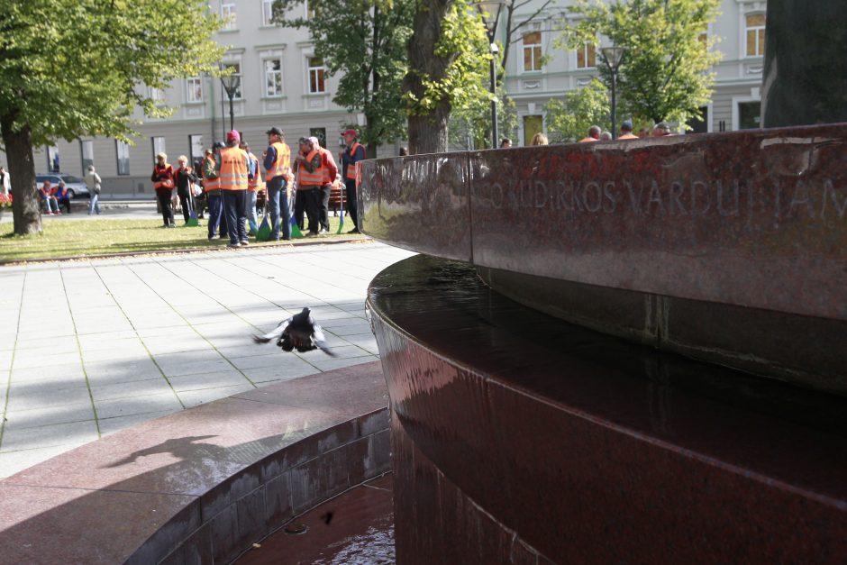 Protestavo vis dar badaujantys kiemsargiai (atnaujinta)