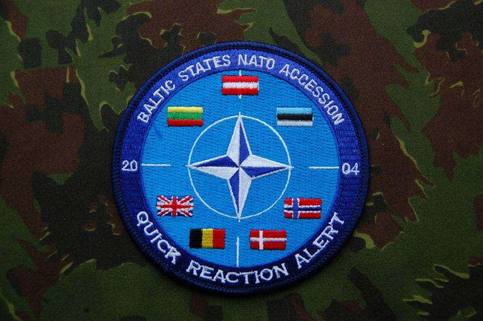 J.Olekas: Baltijos šalių narystė NATO nėra kaimynių klausimas