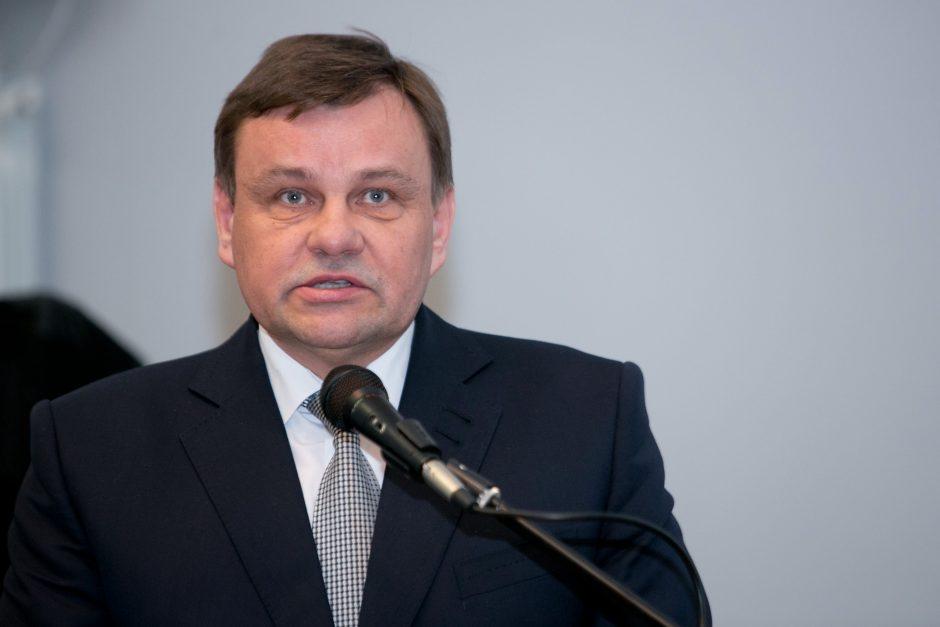 Seimo pirmininkas: neturime teisės nuleisti rankų siekdami nubausti Medininkų žudynių kaltininkus