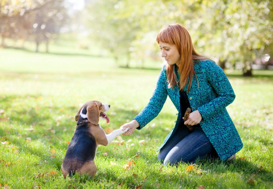 Gyvūnų mylėtojus užguls ir finansinė atsakomybė