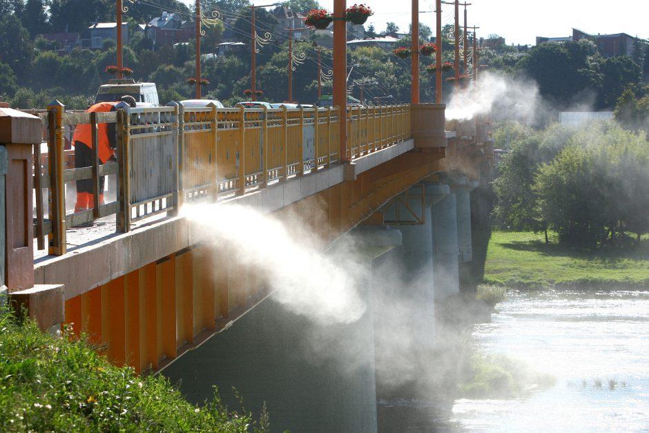 Nerį teršiantiems tiltininkams – 500 litų bauda
