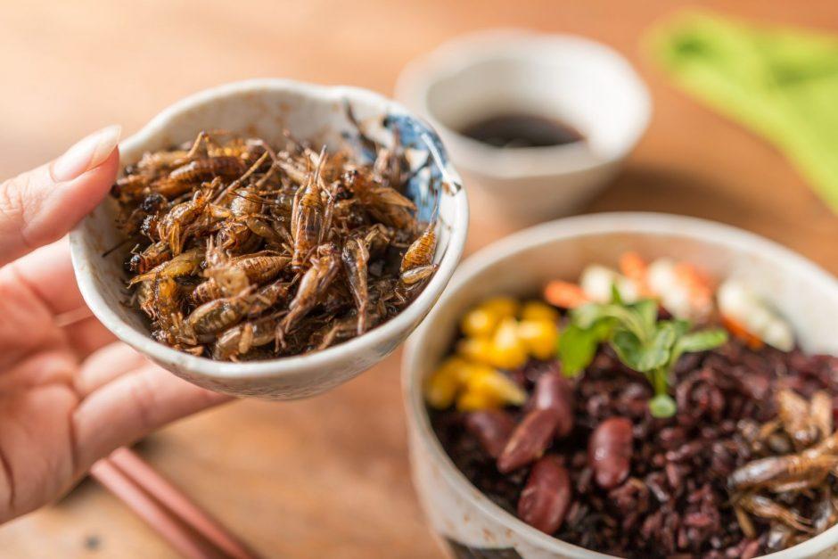 Naujovė drąsiausiems: ar lietuviai valgo vabzdžius?