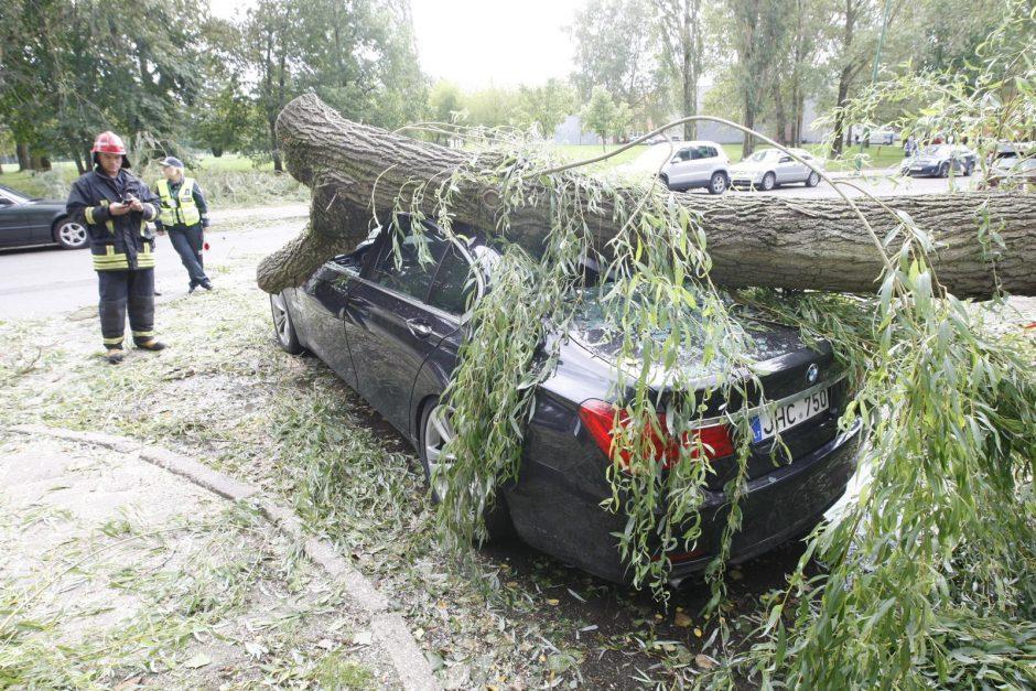 Nevaldoma situacija pajūryje: medžiai virto ant mašinų, vis dar ribojama laivyba