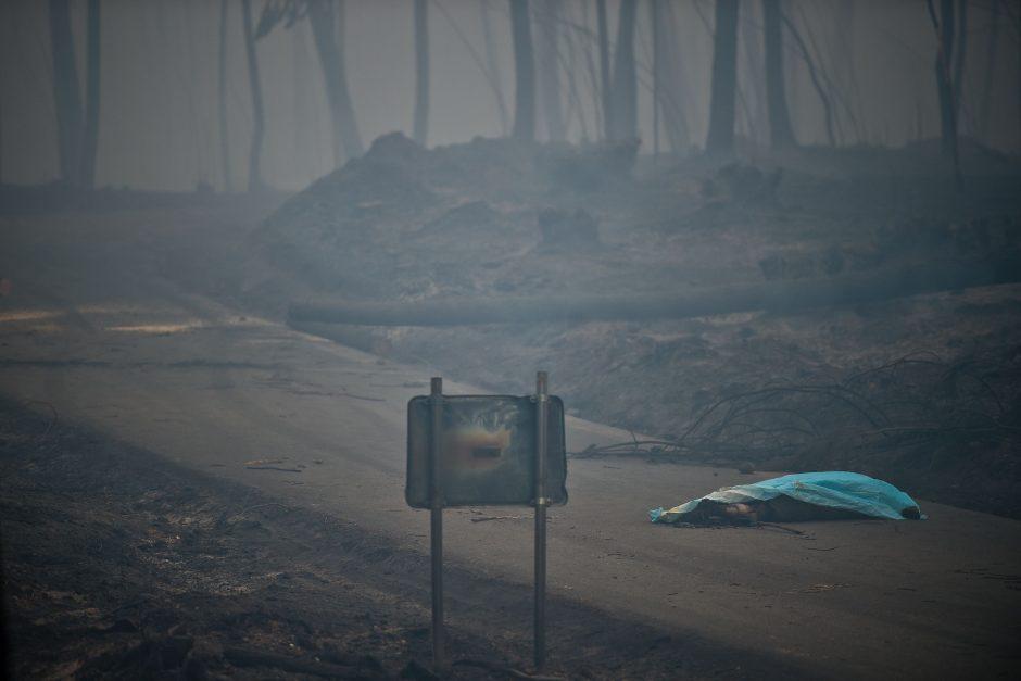 Miško gaisrai Portugalijoje