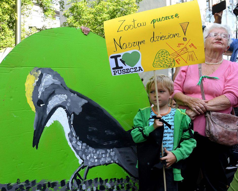 ES padavė Lenkiją į teismą dėl reliktinio miško kirtimo