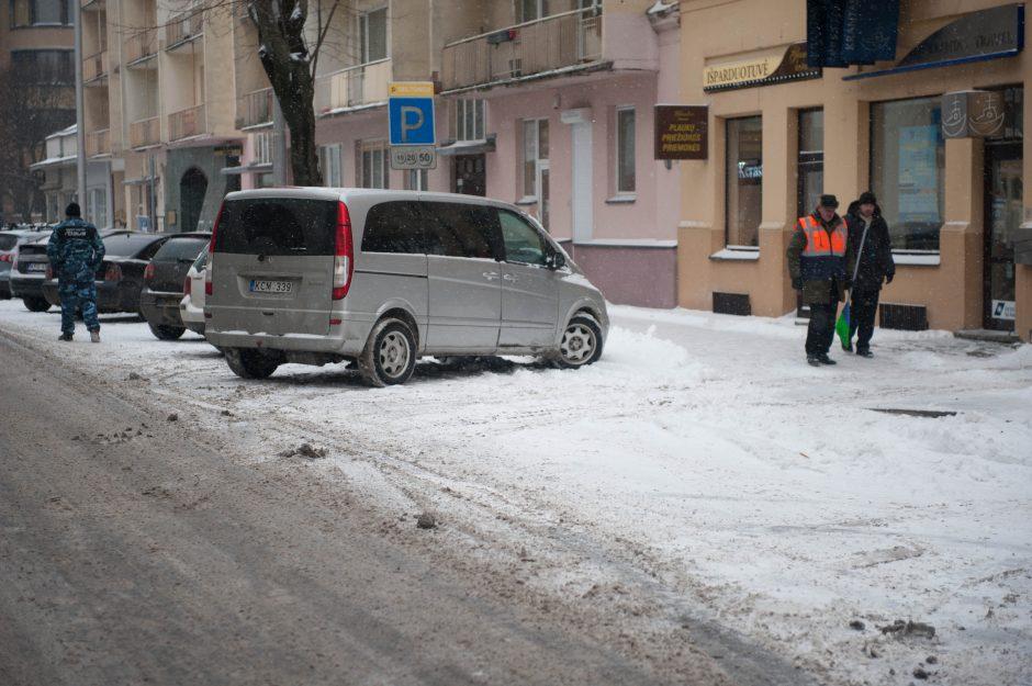 Gausus sniegas Kaune