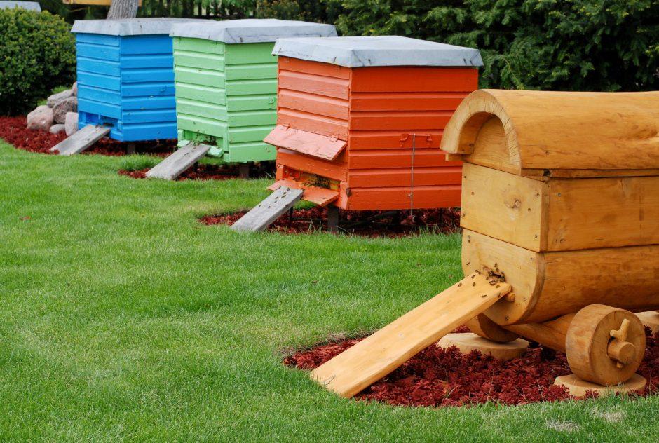 Bitininkas: šiemet – kur kas mažiau lietuviško medaus
