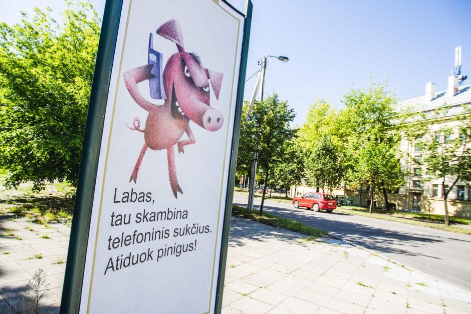 Prieš telefoninius sukčius – padedant kiaulėms