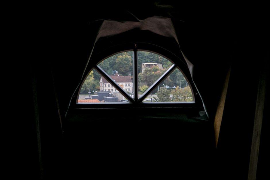 Išskirtinė ekskursija arkikatedros stogu