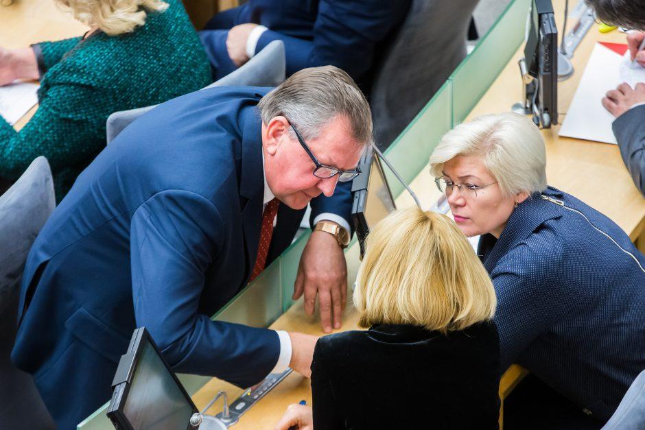 2018 metų biudžetas: vieniems išskirtinis, kitiems be fantazijos