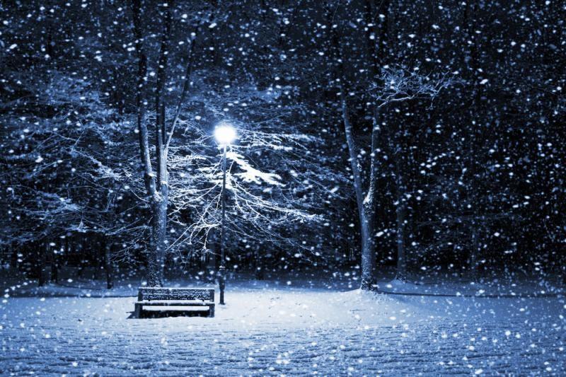 A.Galvonaitė: per šventes šiek tiek sniego turėsim
