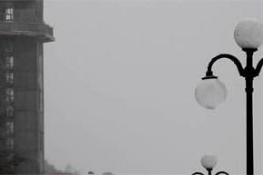 Sekant Kristinos Inčiūraitės  kameros žvilgsnį