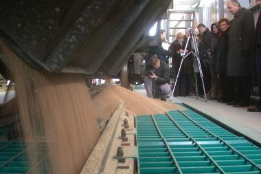 Grūdų srautas per Klaipėdos uostą gali sumažėti