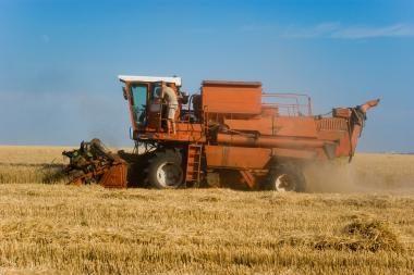 Žemės ūkio produktų supirkimo kainos per metus išaugo 16,1 proc.