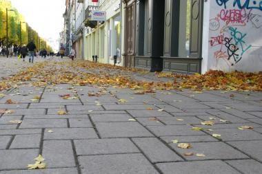 Rudens lapai šoka viliotinį