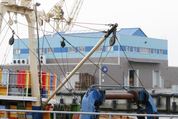 Klaipėdos savivaldybė nusitaikė į žuvų aukcioną