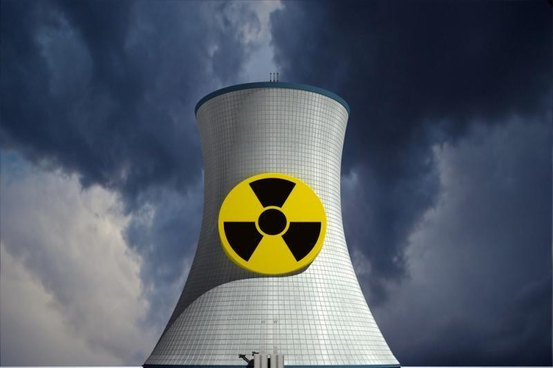 A.Januška: pastačius japonų reaktorius, galim susisaistyti su Rusija