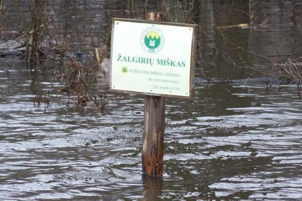Potvynis iš pamario traukiasi nenoriai
