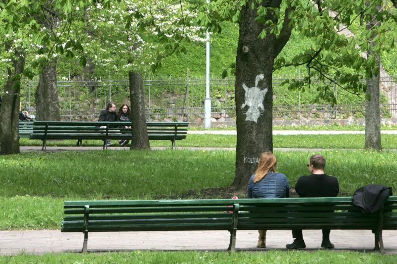 Patvirtintas Sereikiškių parko tvarkymo projektas