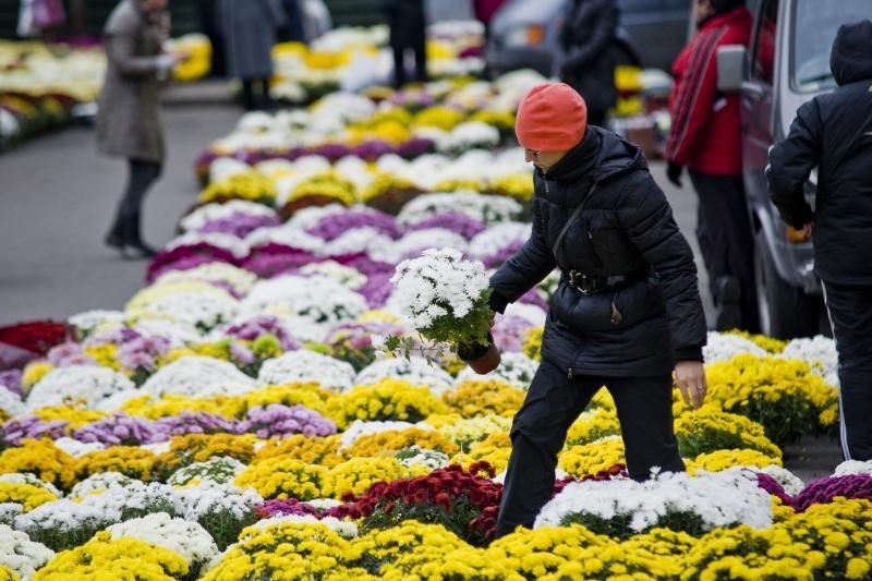 Prekyba Vėlinių gėlėmis - vangi, pagyvėjimo laukiama ketvirtadienį