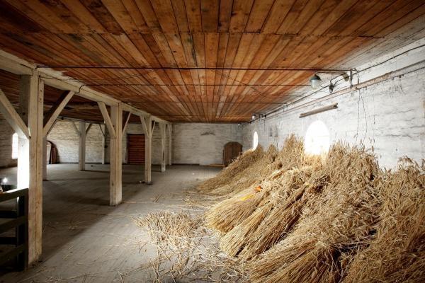 Prekiaujantieji grūdais dar netikri dėl derliaus