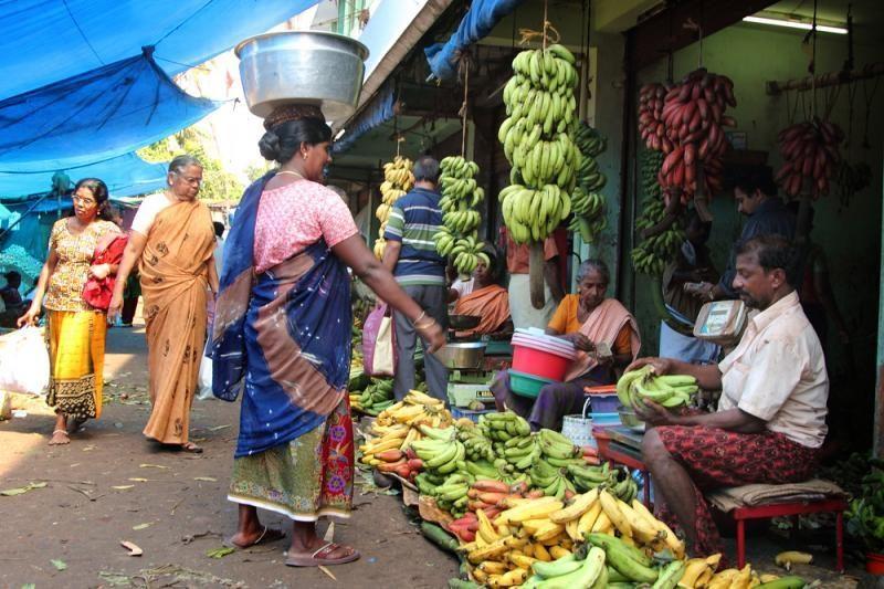 Lietuvė: indai mėgsta šlapintis viešai, bet tai gali kainuoti gyvybę