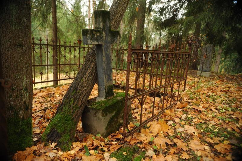 Istorines kapines saugoti padės speciali duomenų bazė