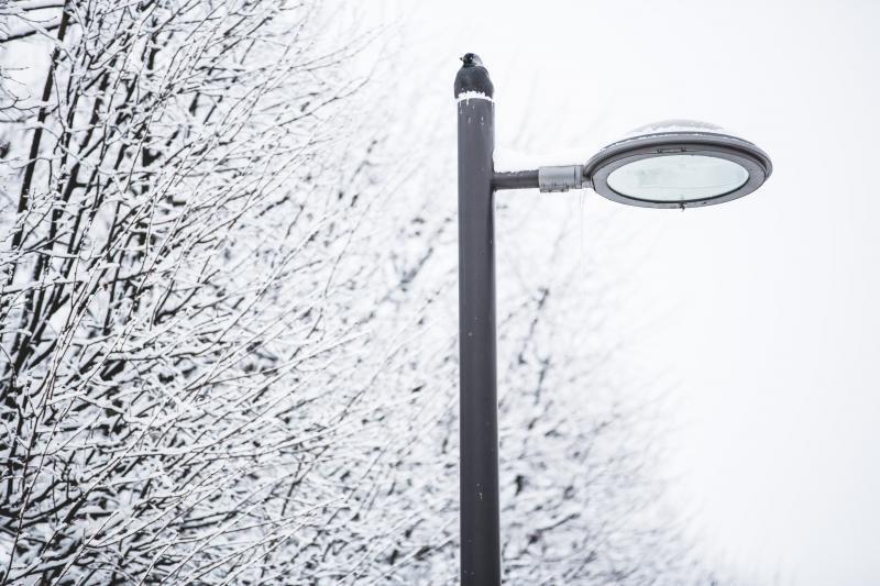 Lietuvoje laikysis šalti orai, savaitgalį dar labiau atšals