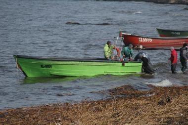 A.Paulauskas: konservatoriai ir kormoranai – prieš pajūrio žvejus