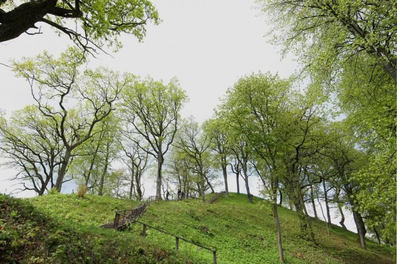 Šveicarų turistams kelia juoką aukščiausia Lietuvos viršukalnė