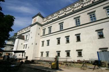 Valdovų rūmų frizo sukūrimo idėją jau parėmė trečdalis savivaldybių