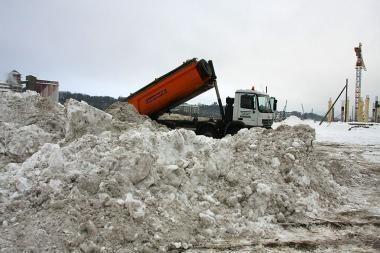 Rūpestingi šeimininkai jau nusikasė sniegą