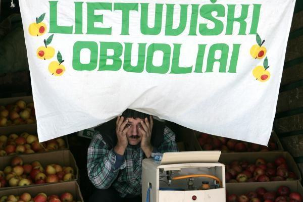 Lietuvoje išauginti obuoliai - viena nepaklausiausių prekių