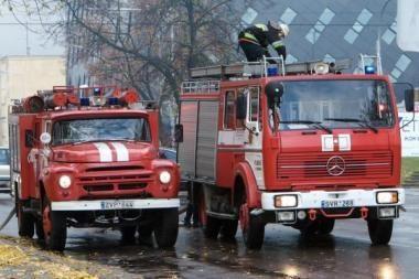 Vilniečiai išgyveno ir lietų, ir ugnį