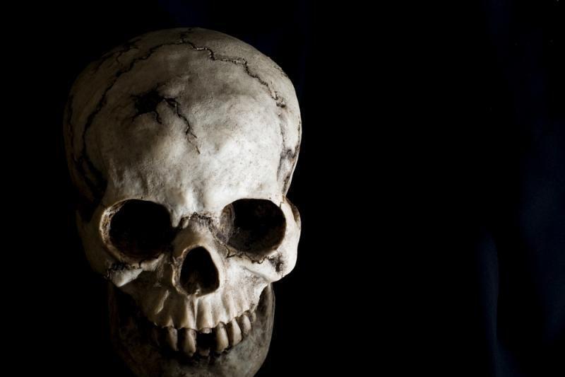 Pakruojo rajone žvyro karjere rastos dvi žmogaus kaukolės