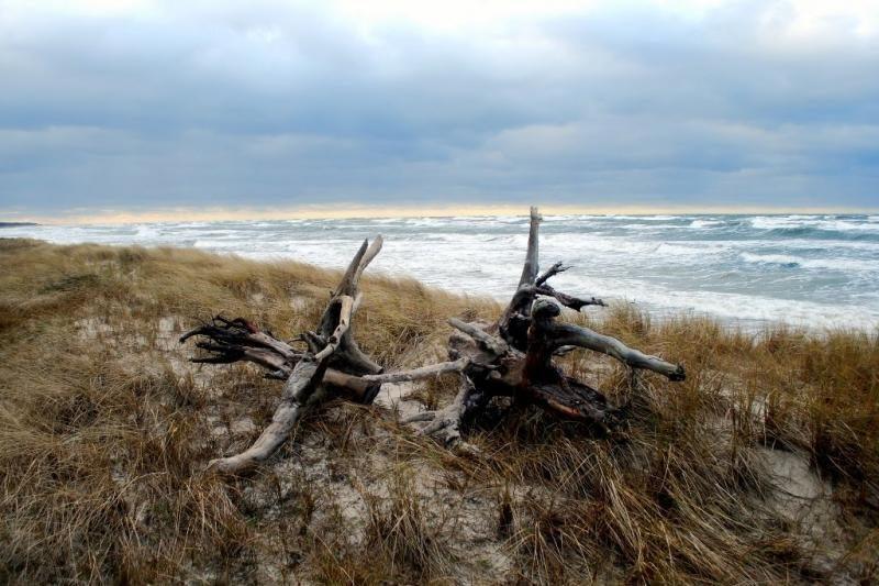 Mokslininkai: Baltijos jūra senka ir gali tapti ežeru