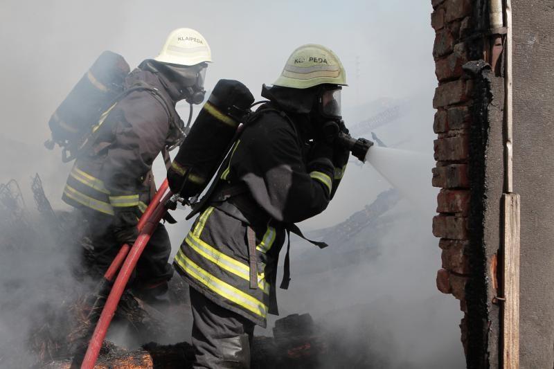 Klaipėdos rajone ugniagesiai gesino degantį autobusą