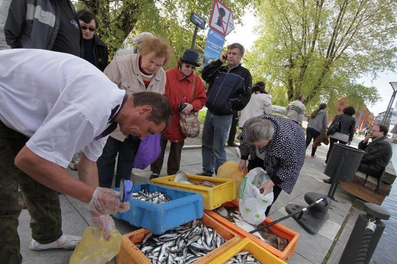 Prekybai šviežiomis žuvimis Klaipėdoje neranda patalpų