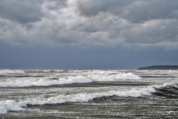 Jūra nuo šiukšlių išvalė Palangos pliažus