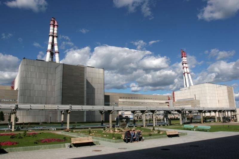 """""""Hitachi"""" turėtų valdyti 20 proc., Lietuva – 38 proc. VAE akcijų"""