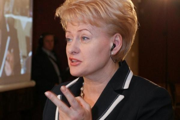 Ruošiamas D.Grybauskaitės susitikimas su B.Obama