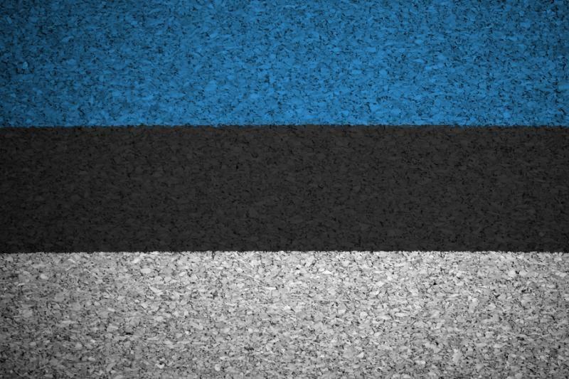 Estijos prezidentas aiškina šalies narystės euro zonoje naudą
