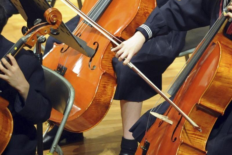 Orkestras atleido rusų violončelininką, traukinyje įžeidinėjusį moterį