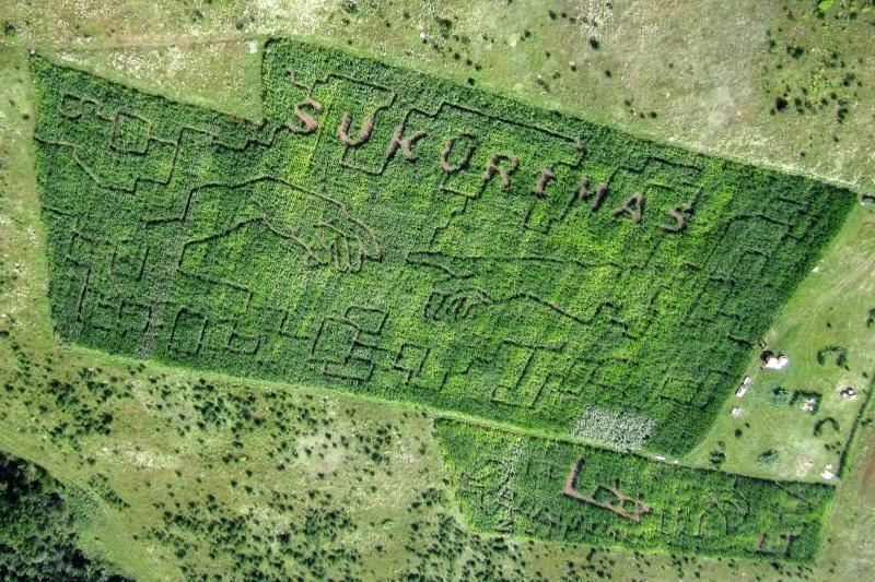 Kukurūzų labirintuose biologas atskleis Apokalipsės paslaptis