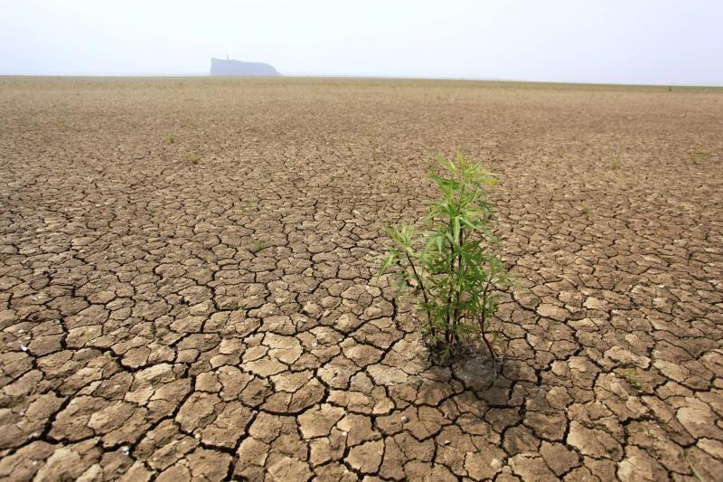 Š.Korėjai gresia didžiausia per šimtmetį sausra